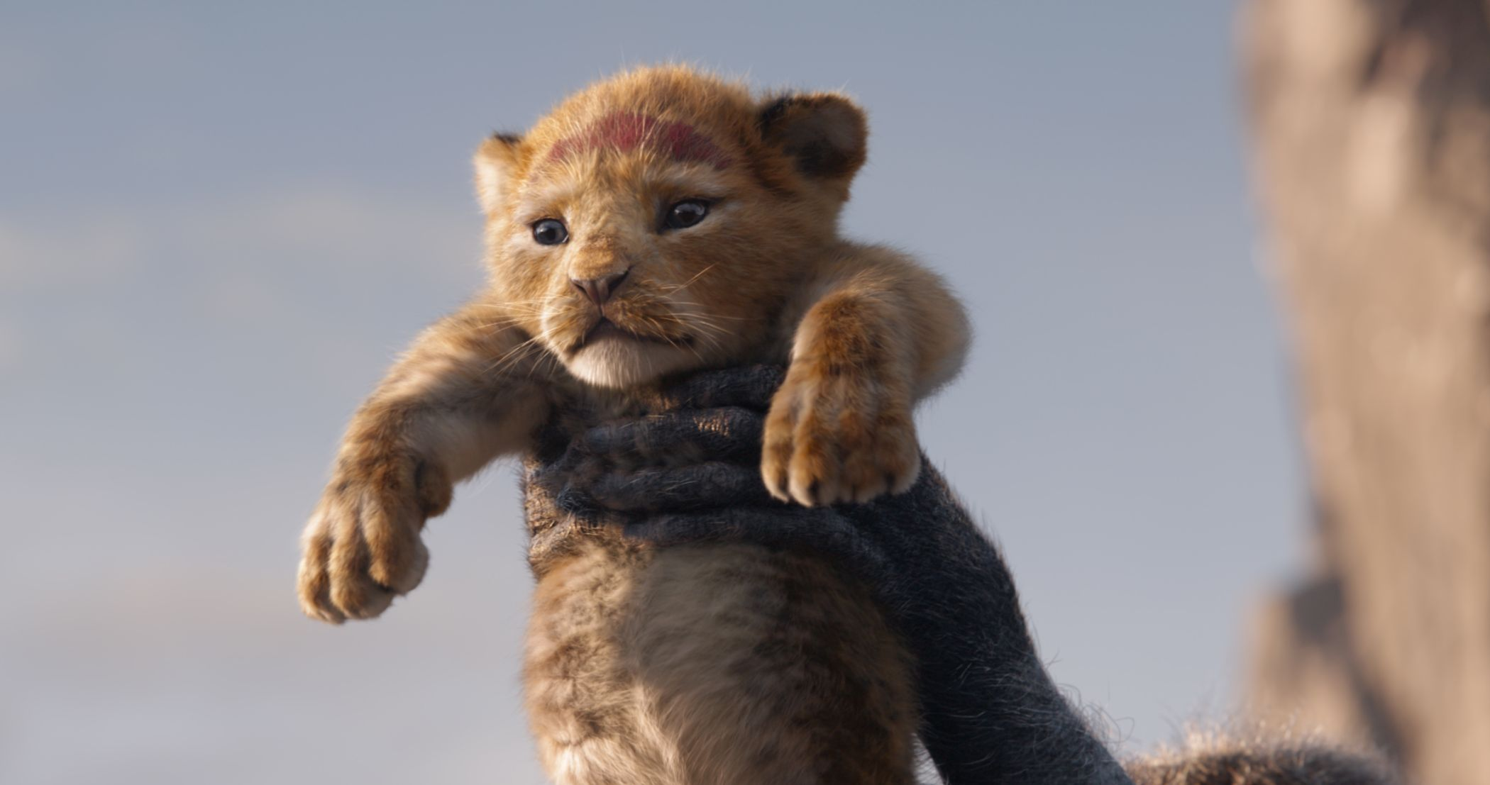 The-Lion-King_dt1_still_1 1.jpg