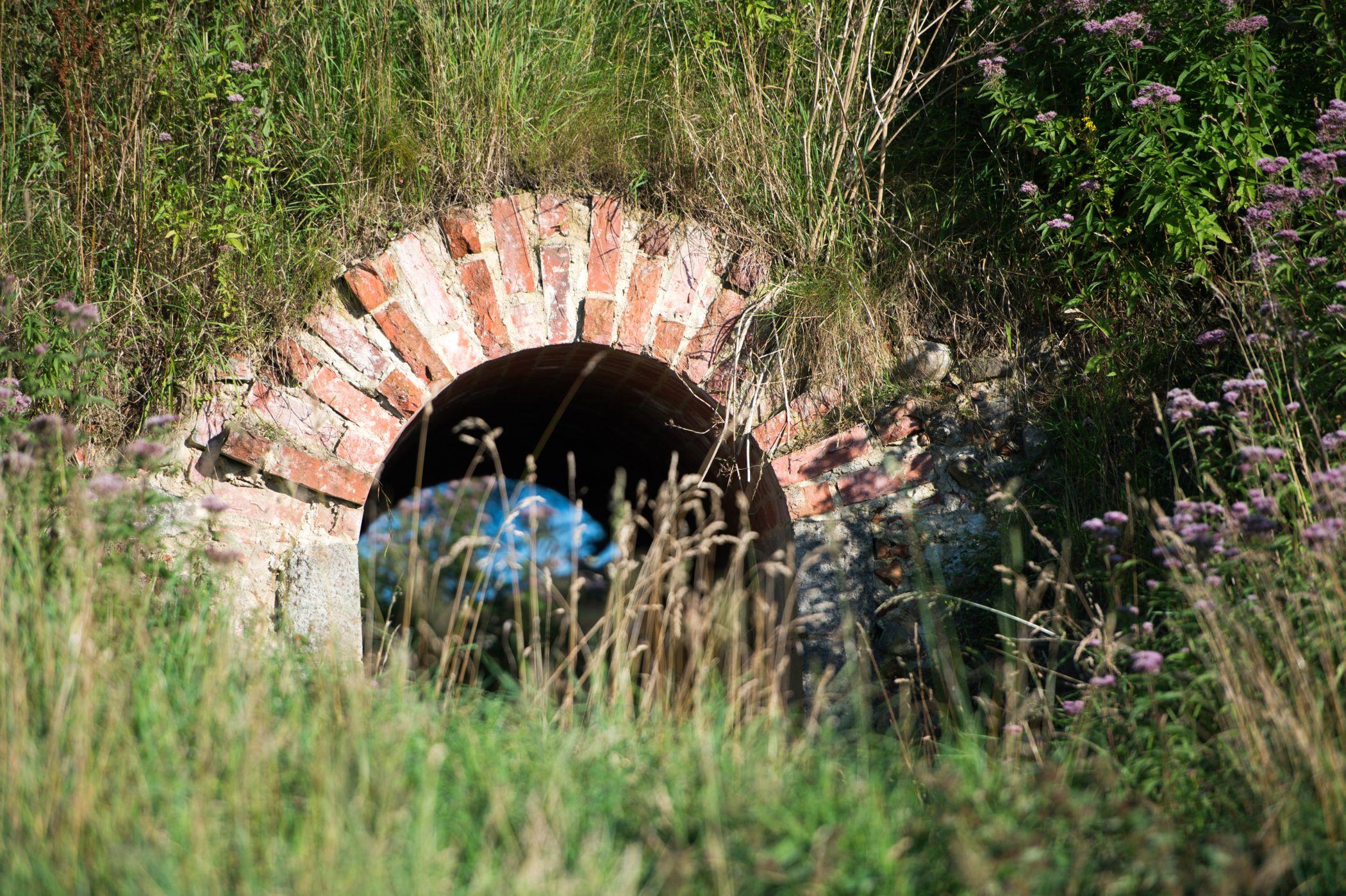 Maagaardphotos-Hald Ruin.jpg
