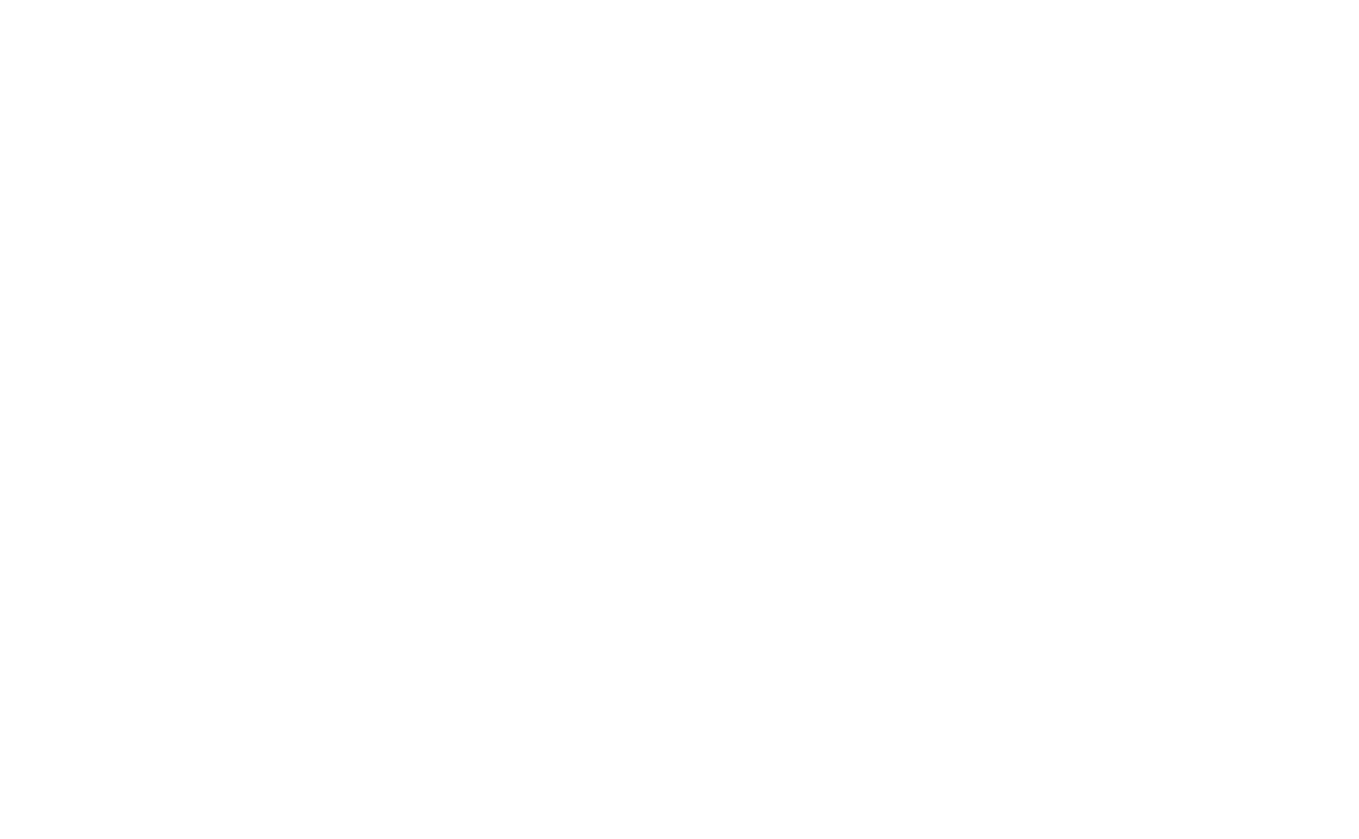 DNX_logo_white_transparent.png