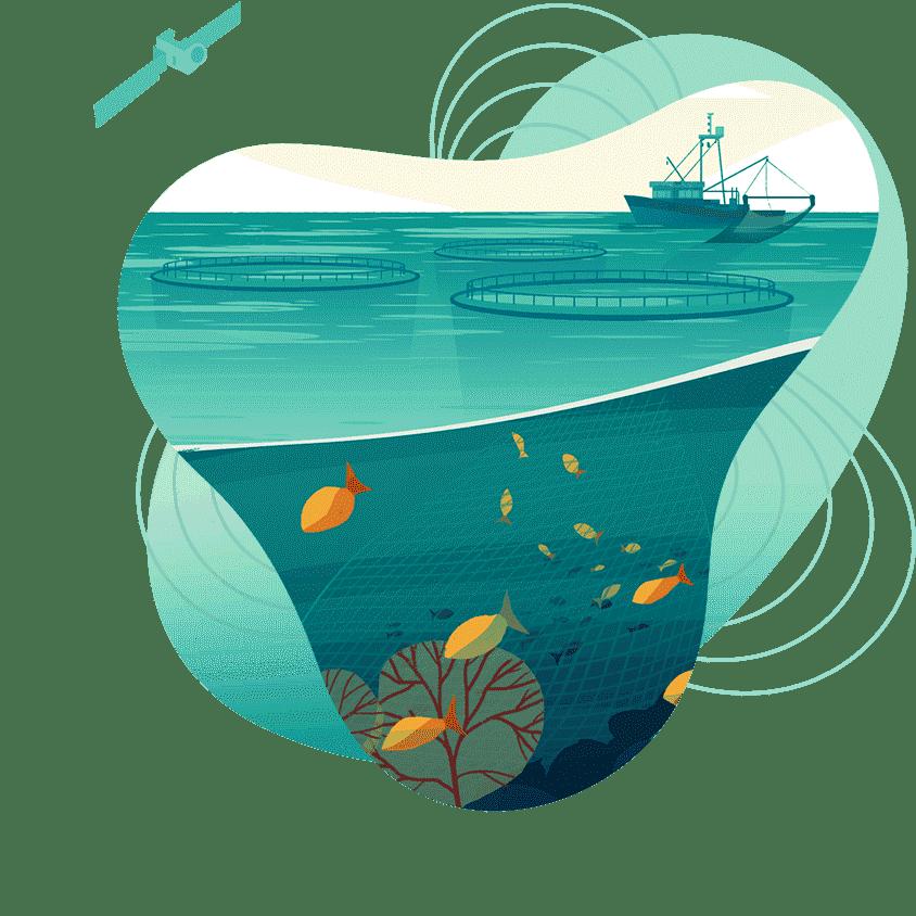 4 Aquaculture .png